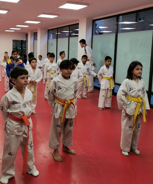 Clases de taekwondo infantil - taekwondo para niños WON'S